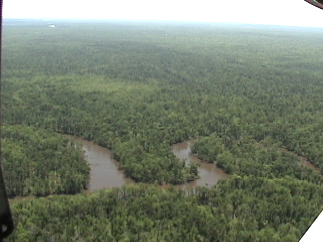 bogue chitto chat Description: on june 30, 1980, president jimmy carter signed public law 96-288 authorizing the 40,000-acre bogue chitto national wildlife refuge (nwr) in washington and st tammany parishes, la, and pearl river county, ms.